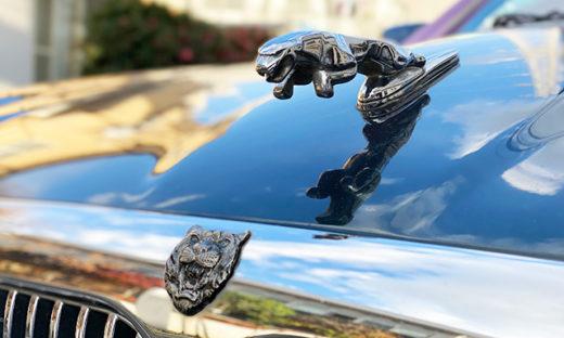 輸入車ジャガー